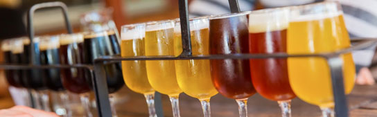 San Francisco Events - Bay Area Brew Festival: Celebrate Craft Beer Culture