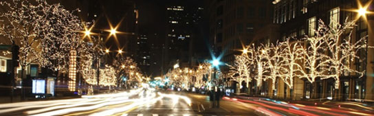 San Francisco Events - 27th Annual Union Street Fantasy of Lights
