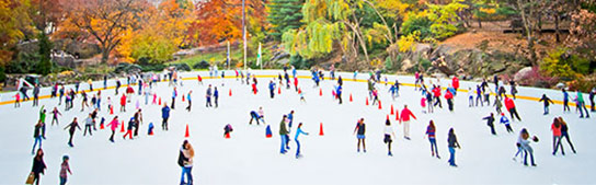Holiday Things to Do in San Francisco - Outdoor Ice Skating Rinks