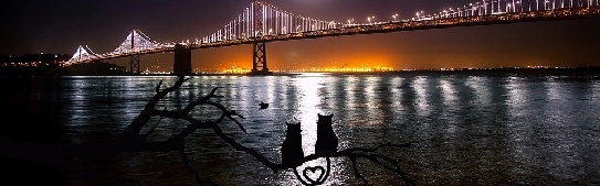 Romantic Things to Do on Valentine's Day in San Francisco