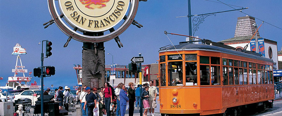 Where do I go to see the Fisherman's Wharf Sea Lions?