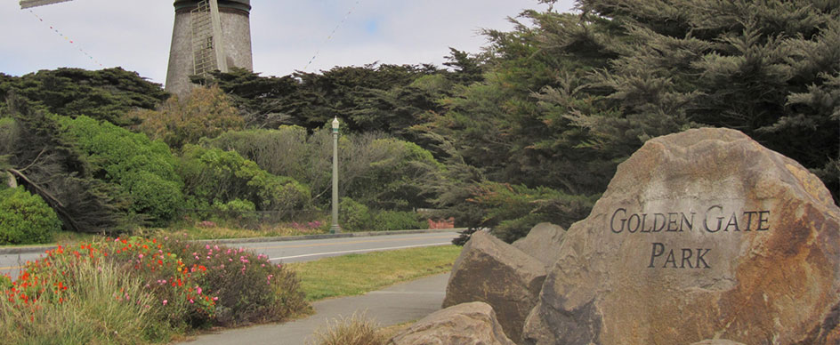 What are the best places to visit in Golden Gate Park?